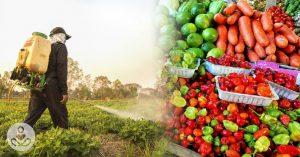 Pesticidi v naši hrani in njihov vpliv na naše zdravje